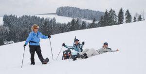 snowwalkers